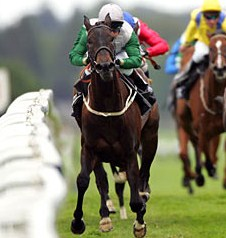 Attraction winner of the 1000 Guineas in 2011