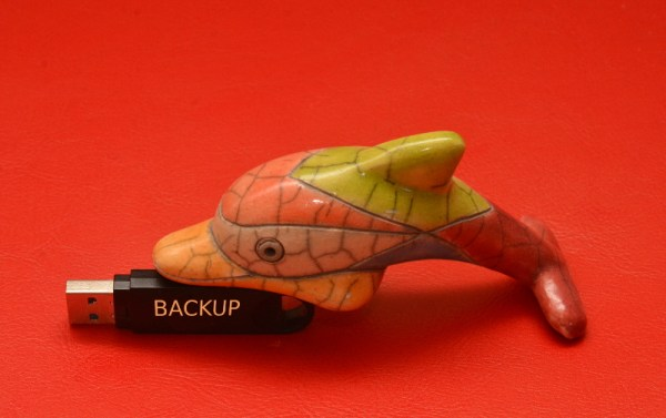 Doplhin with a USB Stick with the label BACKUP