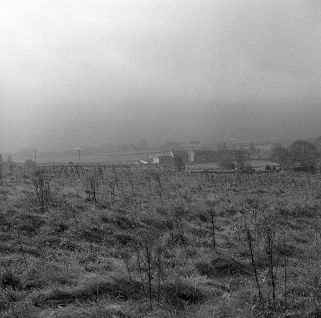 yashica 635 tlr ilford HP5 yorkshire moors mist landscape