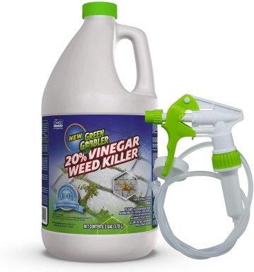 Get Rid of Grass With Vinnegar