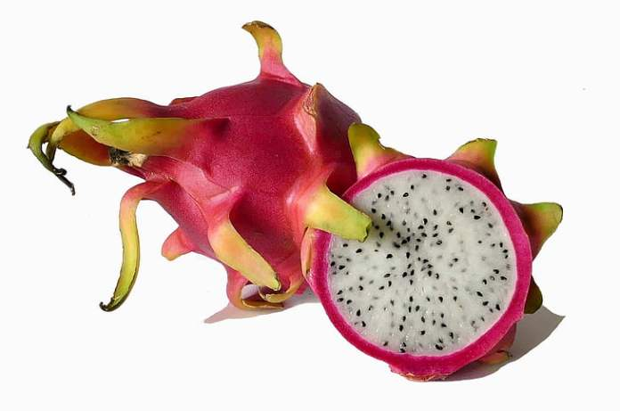 Picking the Right Dragon Fruit
