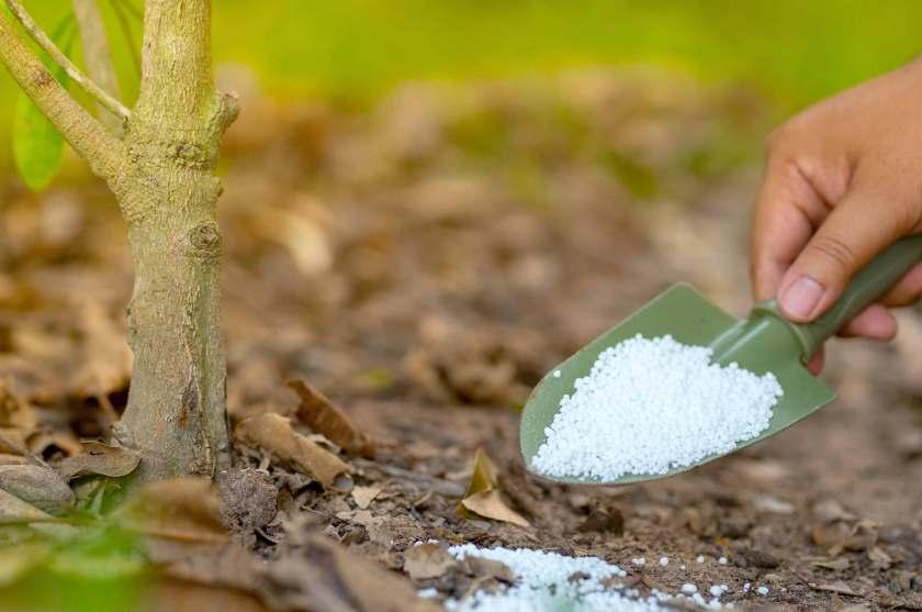 How to Add Nitrogen to Soil