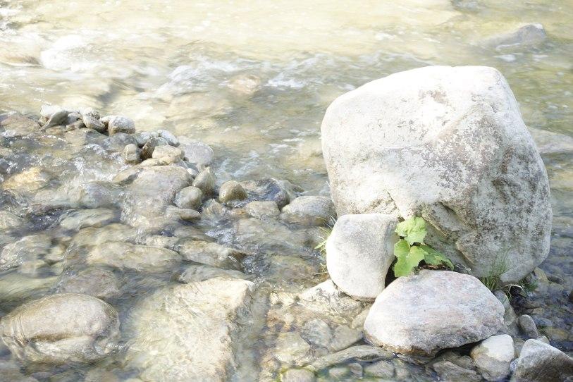 Knowing Areas Where Rocks Grow