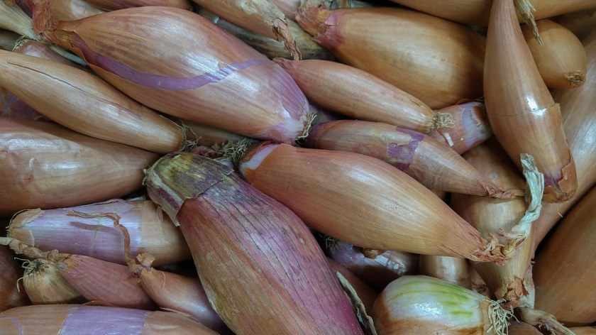 How Long Does It Take to Grow Shallots?
