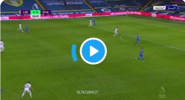 Watch Leeds vs Brighton Live Streaming
