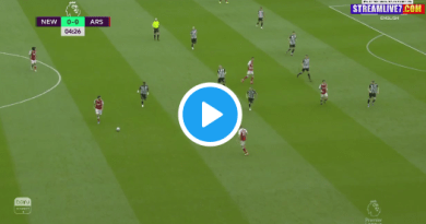 Watch Stoke vs Wolves live streaming
