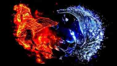 Immortal Phoenix: Is Phoenix bird real? If so, is it still alive? 3