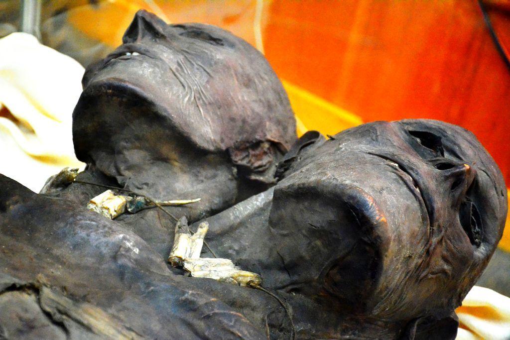 Kap Dwa: A múmia misteriosa de um gigante de duas cabeças 7