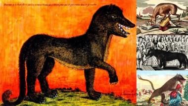 """Bí ẩn về kẻ giết người thế kỷ 18 """"Beast of Gévaudan"""" - Nạn nhân được tìm thấy bị xé xác hoặc chặt đầu! 9"""