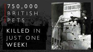 British Pet Massacre