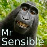 Mr. Sensible