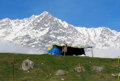 Dharamshala-Snowline