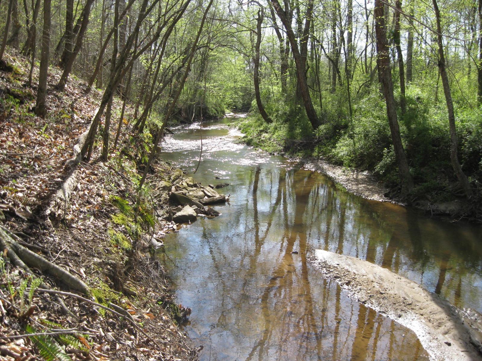 Spring on the creek trail photo tour