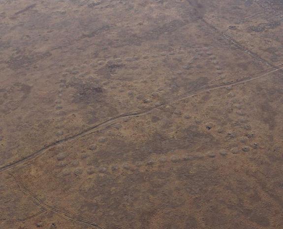 Geoglifos Kazajistán: Cuadrado o rombo.