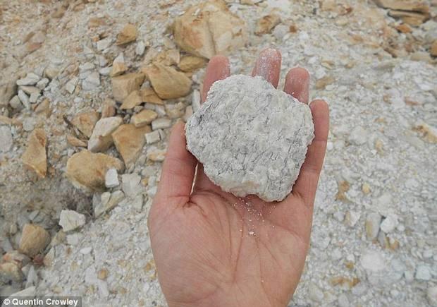En la foto una muestra de suelo con una edad superior a los 3.000 millones de años (paleosuelo).