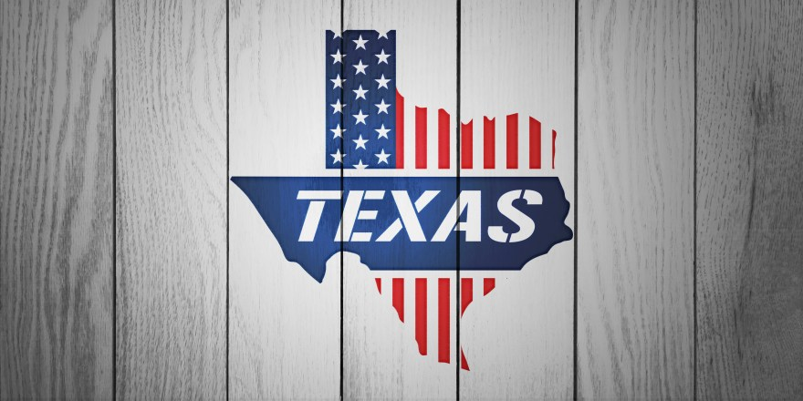 Texas Patriotic Map in White Wood Board Textured