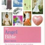 book The Angel Bible by Hazel Raven