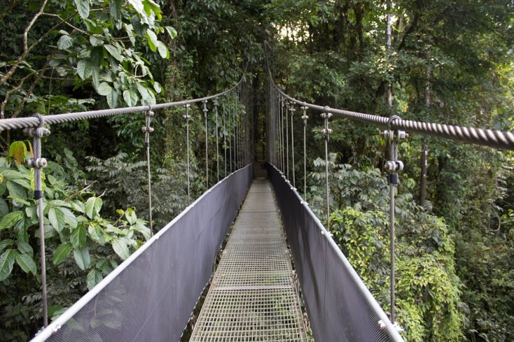 Activities In Costa Rica-Bridge Adventure