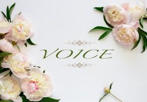voice kiyo