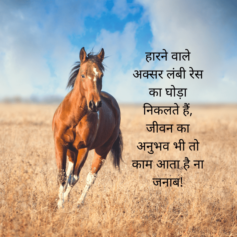 quotes in Hindi by mysticmind