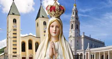 """I call you to persevere in prayer so that with you I can realize my plans""  Visionary Speaks of Fatima …Believes Our Lady's ""Plan"" is her Triumphant Heart"