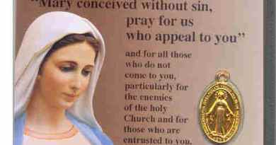 Today is Feast Day of the Miraculous Medal…Did You Know? Our Lady of Medjugorje Spoke of the the Great Devotion and Urged the Faithful to Pray for the Salvation of Souls Who Are Carrying the Miraculous Medal and to Spread the Devotion Around the World