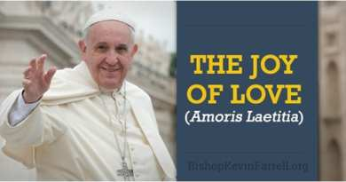 For Many Catholics This Issue is a Big Deal…Cardinal Parolin: Amoris Laetitia is a 'paradigm shift, a new approach""