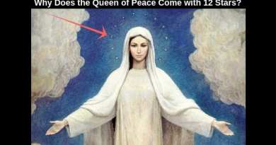 "The Little Known Mystery of the Number ""12"" .. The Twelve Star Devotion and  the Virgin Mary…Did you know the number 12 is the number of ""Perfection."""