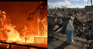 "Queen of Peace Exclusive Report for Mystic Post on California Fire.. ""Where is God?"" Christine Watkins, reporting near the fire, offers answers."