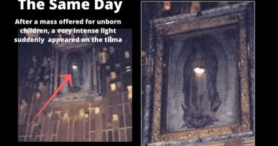 "Miracle in the Basilica of Our Lady of Guadalupe – Womb of Virgin Mary Suddenly Glows During Mass Offered for Martyred Children…""Absolutely amazing. Thank you God!"""