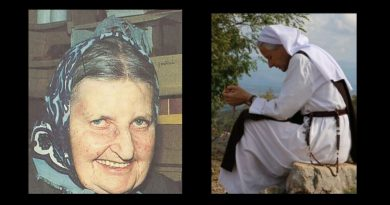 "Sr. Emmanuel and Austrian Mystic Maria Simma – ""Do not take Holy Communion in hand – One Bishop will be in Purgatory until the end of time for permitting the practice without caution."" Illuminating details of life in Purgatory"