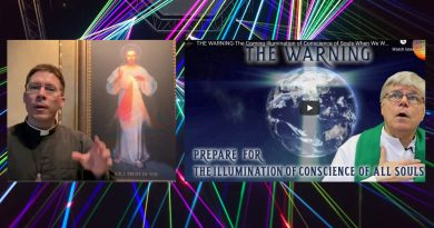 "Is this the beginning?  Is the Pandemic a harbinger of the coming ""Illumination of the soul""?  Priests now openly discuss critical event. ""The Illumination of the Soul will be like a spiritual x-ray that will reveal to each individual which path they are on."" Fr. James Blount and Fr. Goring examine."