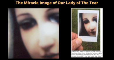 The Story of the Miracle Image of Our Lady of The Tear…Apparition in USA?