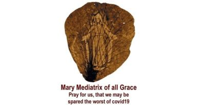 "The rose petal from the 1948 shower of rose petals…""Our Lady Mary, Mediatrix of All Grace, Pray for us that we may be spared the worst of COVID-19."""