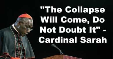 """The Collapse will come..Do not doubt!"" Cardinal Sarah"