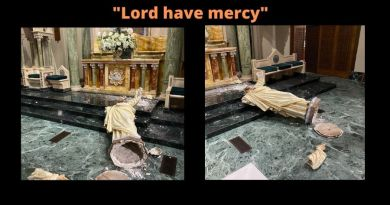 """Lord have mercy""…Vandalism at St. Patrick Cathedral in Texas …""""I am devastated at this irreplaceable loss"""