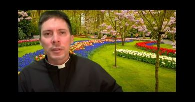 Seeing God Forever – Fr. Mark Goring