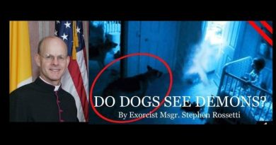 From the Exorcist Diary – Msgr. Stephen Rossetti Claims Dogs See Demons