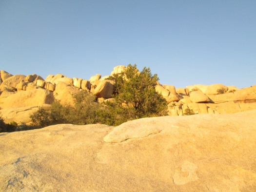 A special effect on my camera allowed me to illuminate the boulders in this photograph.