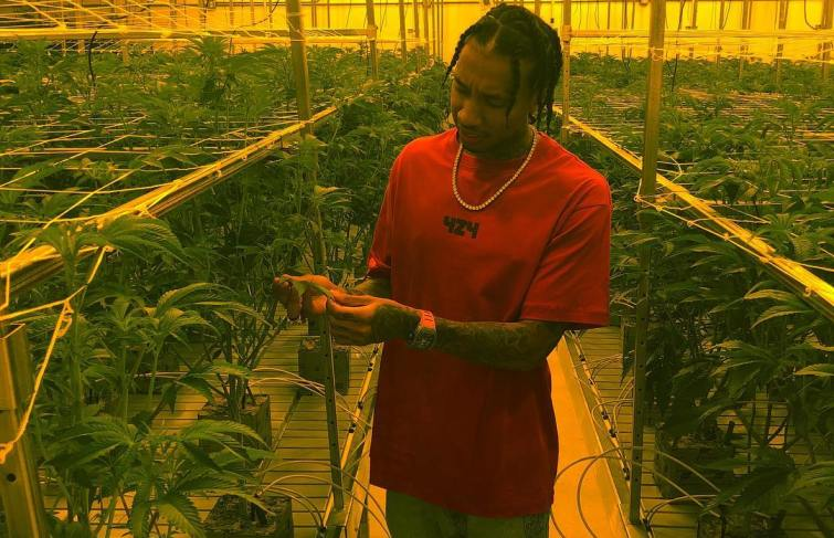 Tyga To Launch a Weed Strain After his Hit Single, 'Taste