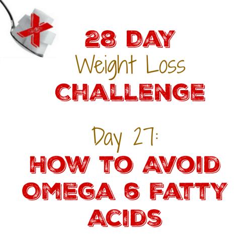 Challenge Day 27