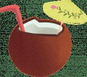 COCONUTS DRINK