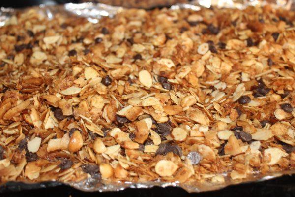 Low Carb Granola, Grain Free