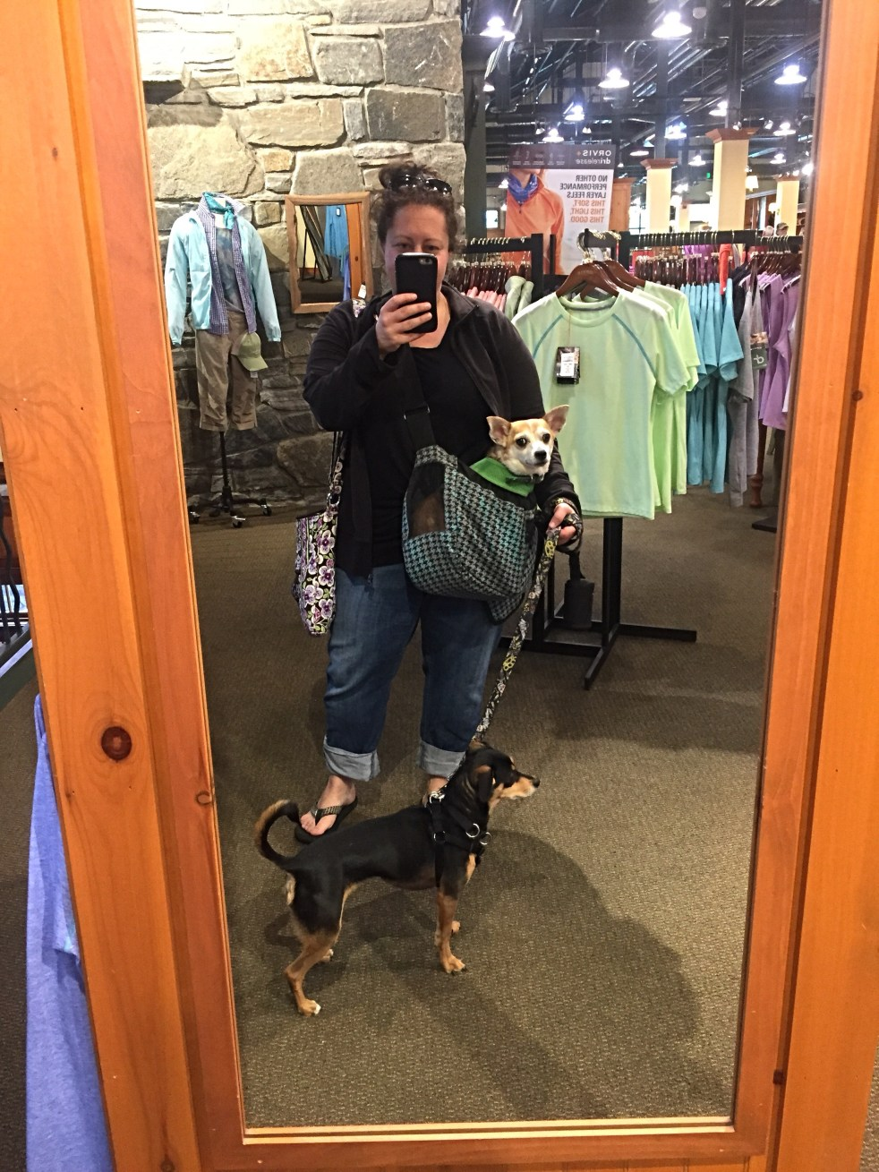dog in a sling michelle maskaly