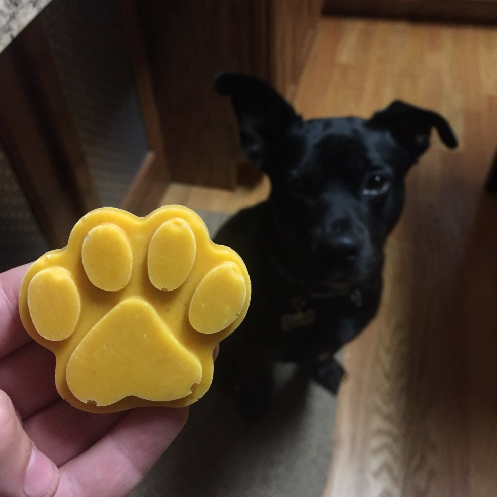 frozen pumpkin paw treats