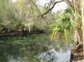 Florida Feb 2012 102
