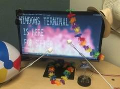 windows terminal preview