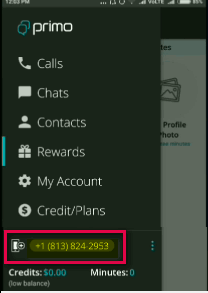 Whatsapp Install How To