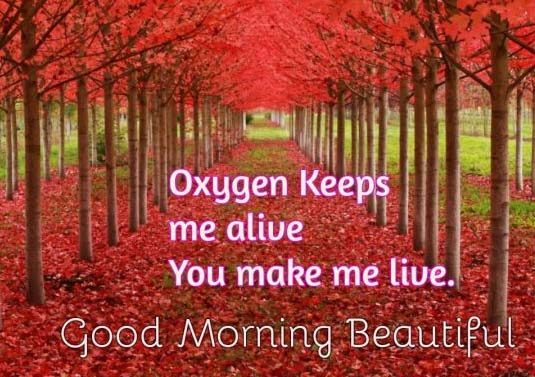 Good Morning Wishes for Dear