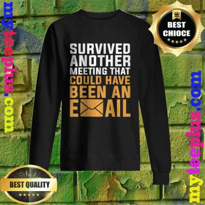 I Survived another meeting that should have been an email Sweatshirt